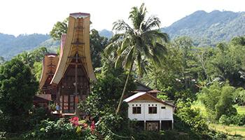 Viajes a Indonesia - Sulawesi